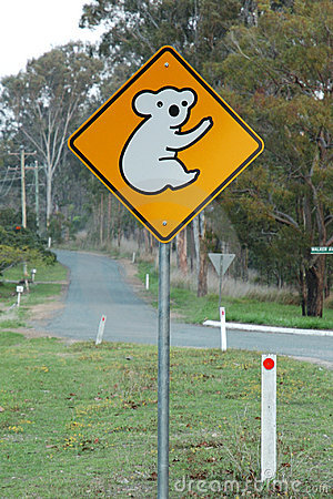 Koala ahead sign