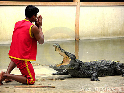 Samutprakan Crocodile Farm and Zoo 4