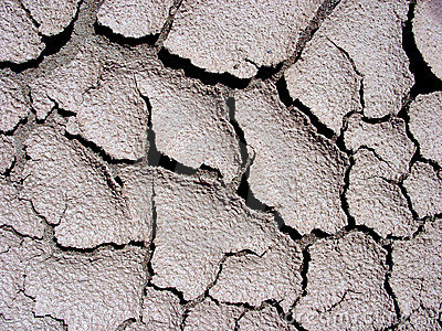 Cracks in Mud