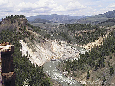 Canyon - Yellowstone