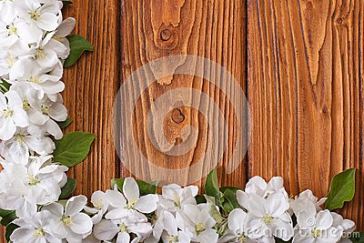 Corner floral frame from flowers apple tree on a wooden