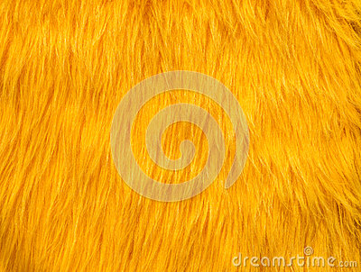 Yellow fur abstract texture