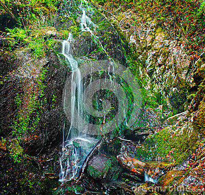 Cascading spring water