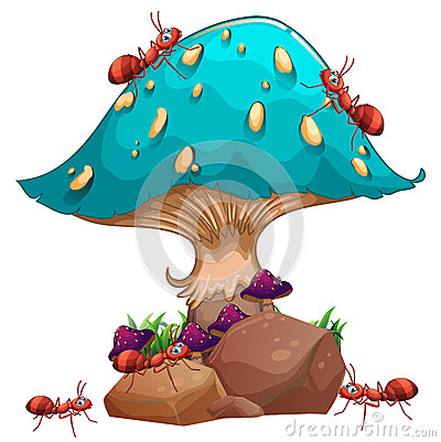 A giant mushroom and a colony of ants