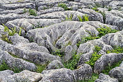 Limestone pavement Mahlam Cove Yorkshire Dales England