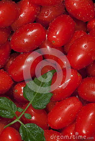 Washed Red Grape Tomatoes