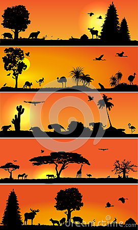 Vector banners with wold fauna and flora
