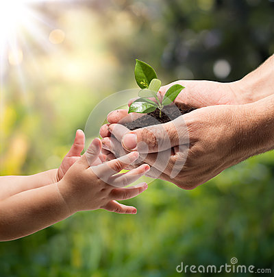 Life in your hands - plant whit garden background