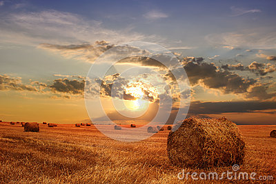 Stubble field and hay bales