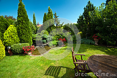Landscaped garden in summer
