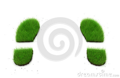 Green Grassy Footprints