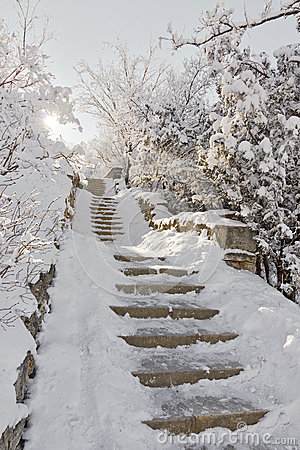 Stone staircase in the snow.