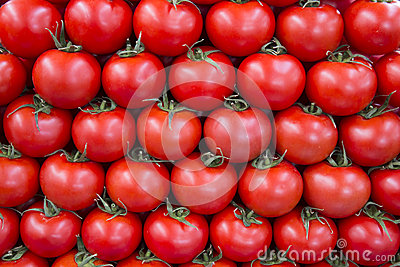 Tomatos in row as background