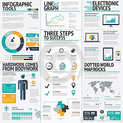 Modern fresh colored business infographic vector