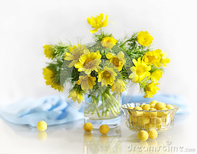 Spring yellow flowers in a vase