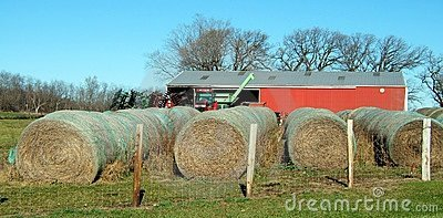 Hay-Baled and Ready