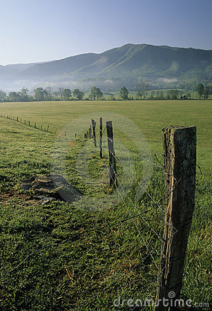 Fence, Fields, Spring, Cades Cove