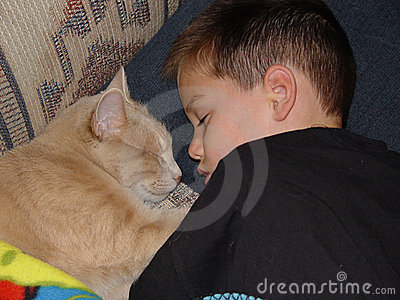 Sleeping Boy and Cat