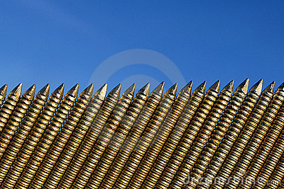 A row of nails