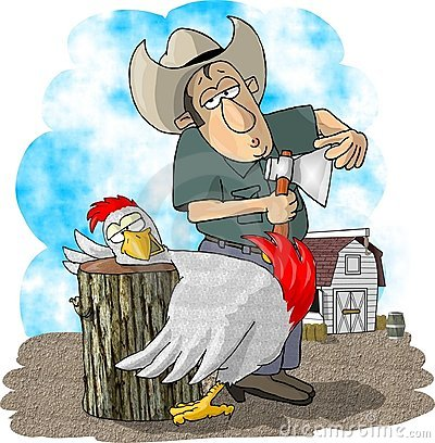 Farmer and chicken