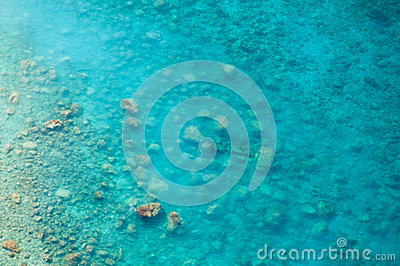 Clean clear sea, top view of the water and seabed