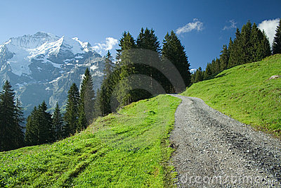 A road in alps