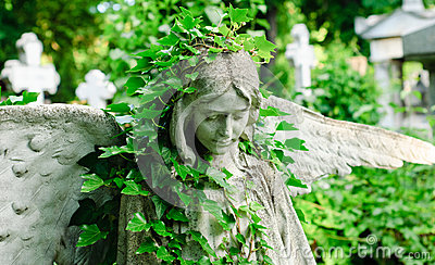 Angel statue with ivy