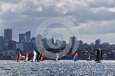 18 foot skiffs on Sydney Harbour
