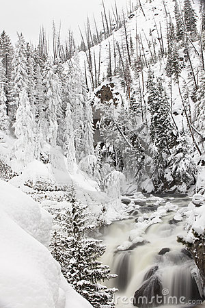 Frozen river in Yellowstone National Park during Winter