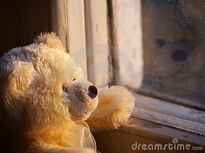 lonely teddy bear