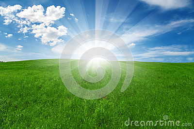 Green field and blue cloudy sky with sun