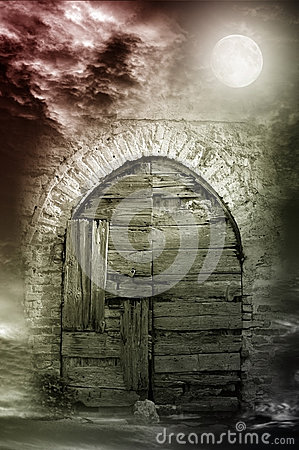 Fantasy night door