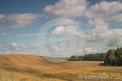 Sloping montainous field in the country side with white beautiful clouds