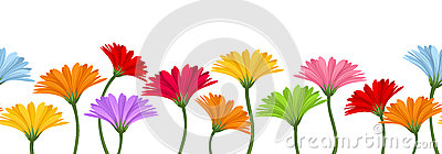 Horizontal seamless background with colorful gerbera flowers. Vector illustration.
