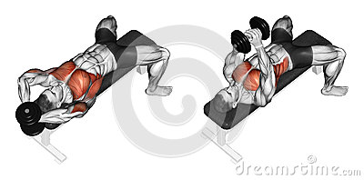 Exercising. Link dumbbells from behind the head
