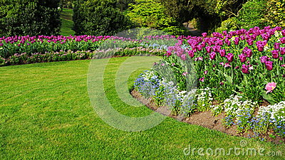 Garden with a Colourful Flowerbed and Grass Lawn