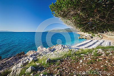 Beautiful stone beach with crystal clear tourquise sea surrounding by pine tree in Croatia, Istria, Europe