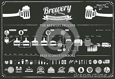 Brewery infographics - beer illustrations