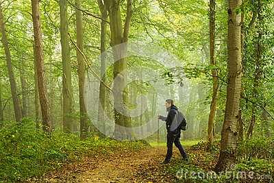 Hiking in forest