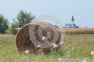 Church, bale of hay and a corn field