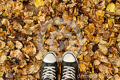 Standing in dry autumn leaves