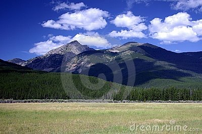 Rocky Mountain Field