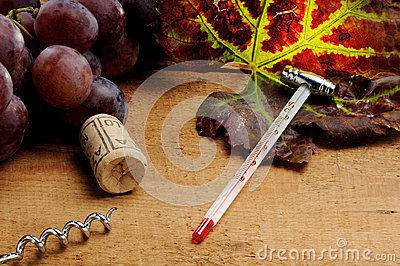 Tools for enology