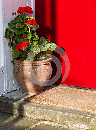 Flower Pot and Welcome Mat on Doorstep