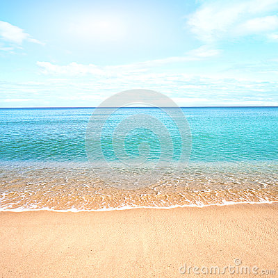 Sandy beach with calm water against blue skies.