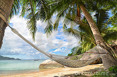 Hammock hanging between palm trees at the sandy beach and sea coast