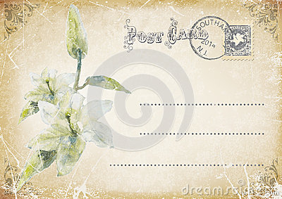 vintage grunge postcard with flower. illustration