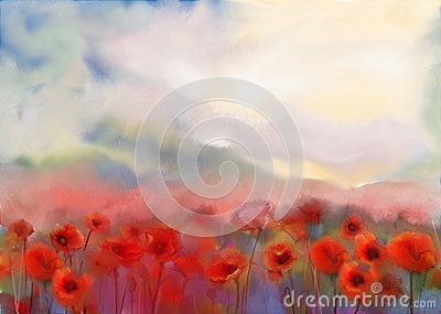 Red poppy flowers .Watercolor painting