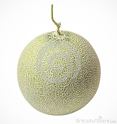 Cantaloupe melons on a white background