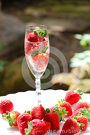 Sparkling Champagne & Stawberries